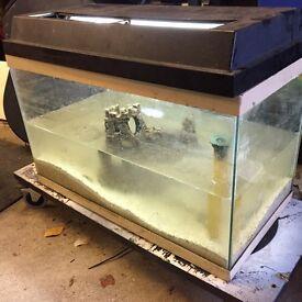"Fish tank 30"" x 12"""