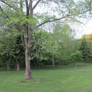 Campground Sale: 1.5 Km fr Lake Erie / Pt Burwell + 14 acres London Ontario image 10