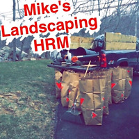Mike's spring cleaning and landscaping