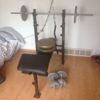 Weights, barbells, dumbbells and bench