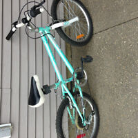 Girls 5 Speed Bike for Sale - perfect for 5-8 year old