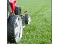 Grass Cutting , From £9.99 Gutter Cleaning , Pressure Washing Hedge Cutting Tidy Ups 07856118660