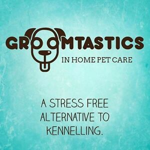 Professional In Home Pet Care - Dog Walking / Pet Sitting