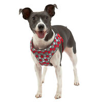 Top paw Paw print print step in Harness