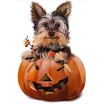 - Yorkshire Terrier with Pumpkin Garden Flag House Decor Waterproof Yard Banner