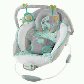 NEW baby bouncer Ingenuity