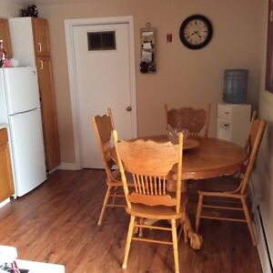 Riverview 3 bedroom Lower level