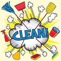 Home/business cleaner