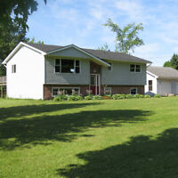 Beautifully Renovated Nine Mile River Home