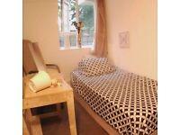 Single bedroom in a nice flatshare!