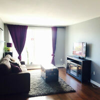 1 Bedroom Furnished/Unfurnished Condo in Trendy Bankview