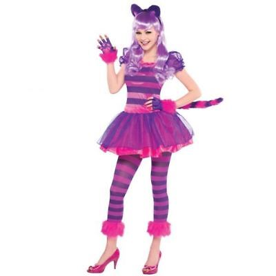 Cheshire Cat Alice in Wonderland Fairytale Book Day Week Girls Costume 10-12yrs - Guy In Fairy Costume