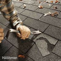Gutter cleaning and roof repair