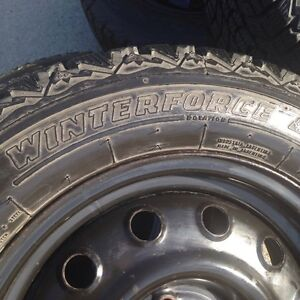 Firestone Winter Tires For Sale