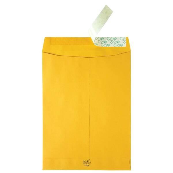 "Redi Strip Catalog Envelopes, High Bulk, 9""x12"", 250/CT, KFT"