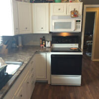Newly Reno 1 bdrm Apt In Triplex - aug or sept