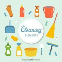 LyeCel Cleaning Services
