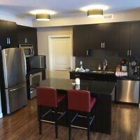 Spacious & Modern 2 bedroom, 2 bathroom Condo - 1043 sqft