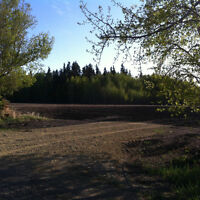 Country Living Near Edmonton-Out of Subdivision.