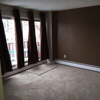 Newly Renovated Condo for Rent