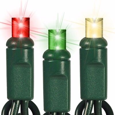 Professional Grade S4 Christmas Lights- 10 LED Strings (red, warm white & green) ()