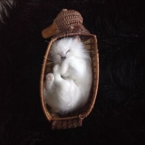 Needle Felted Pet Memorials Cats Dogs