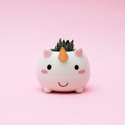 Smoko Unicorn Planter Bowl Kawaii Cute Chibi Small Round Dorm Window Garden Herb