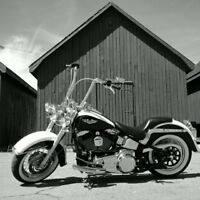 Harley Deluxe Softtail