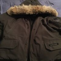 Canada goose bomber up for grabs large