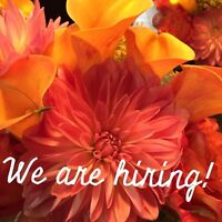 The Flower Studio is hiring part time!!