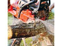 Free wood and woodchip!