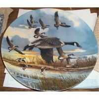 Collector plates Collection Animals and Birdsover 100 make me