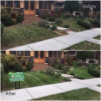 ***FALL CLEANUP*** BEST DEAL***BEST SERVICE***30% OFF***