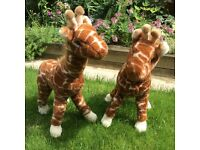 Pair of giraffe soft toys