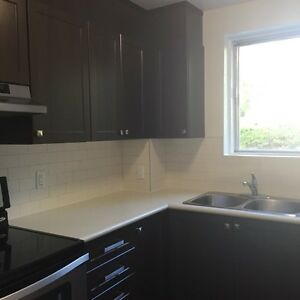 NEWLY RENOVATED ONE BDRM PLUS DEN IN NEPEAN FOR COUPLES w/ POOL
