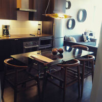 Luxuty Designer Furnished 1+Den Condo (avail. May, June, July)