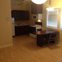 1 bedroom apartement Downtown Campbellton for September 1st