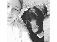 Emma's Pooch Walks. Local dog walker and pet sitter