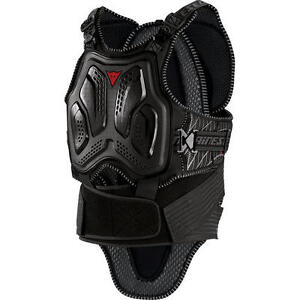 Dainese back protector and chest protector