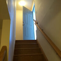 NEW ONE BADROOM BASEMENT APARTMENT IN MILTON