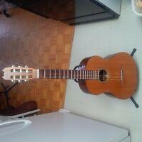 Kamouraska Concert Classical Guitar