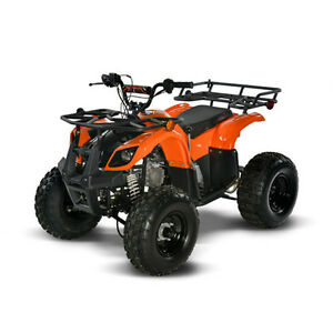 KIDS ATVs, Dirt Bikes & Buggies!!   CALL 734-1114  -  BROADVIEW