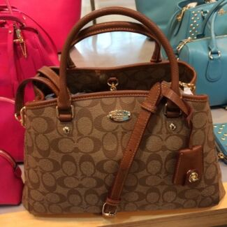 Authentic Coach  Ascot Vale Moonee Valley Preview