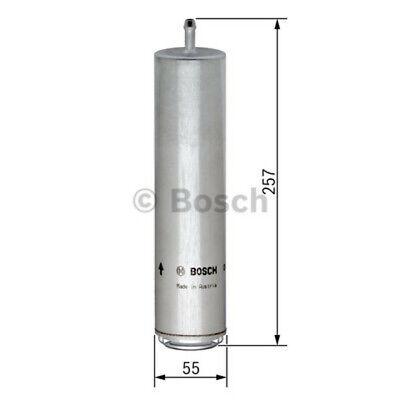 BOSCH Kraftstofffilter für BMW 3er (F30,F80,F34,F31),4er (F33,F83,F32,F82,F36)