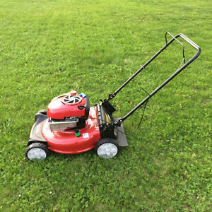 Lawn mowing and maintenance!   I use my own mower