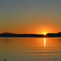 Housemate Wanted in 2 Bdrm Beach House July 1 (Cordova Bay)