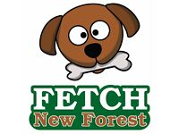 Fetch New Forest Dog Walking, Boarding, Day Care & Pet Visits. Insured, Licenced and Experienced.