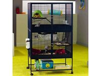 Looking for savic royale cage.