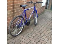 Mountain Bike Maxtma Hype gents adult size