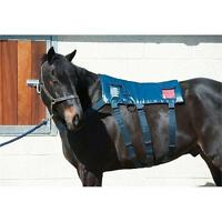 Trailering/Hauling or Massage for your Horses